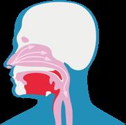 Диаграма, която показва как дразнители навлизат в дихателните пътища и причиняват влажна кашлица